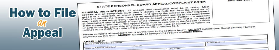 File an Appeal